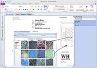 Microsoft Office Professionnel 2013