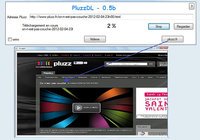 PluzzDL Windows